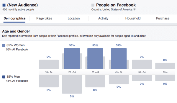 Facebook ad manager demographics